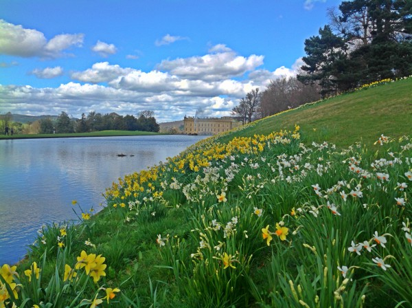 Enjoy the stunning spring grounds at Chatsworth