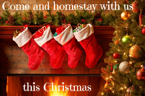 Come and enjoy an English Christmas with us