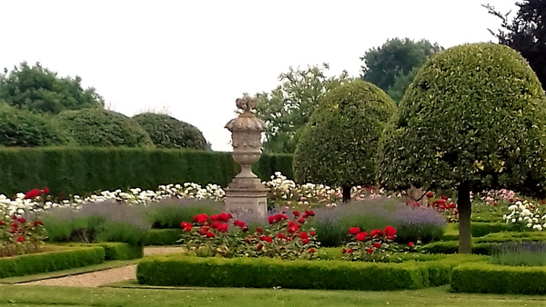 Grimsthorpe rose garden in full bloom