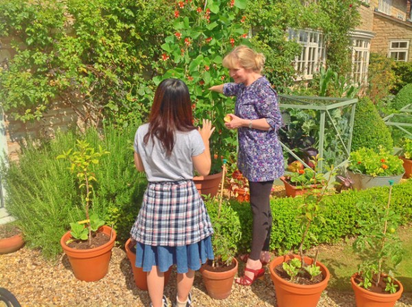 Studying the organic produce in the kitchen garden.
