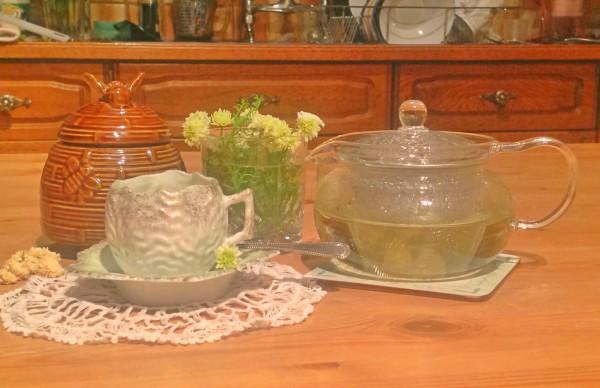 Enjoy making delicious, organic tea from the garden