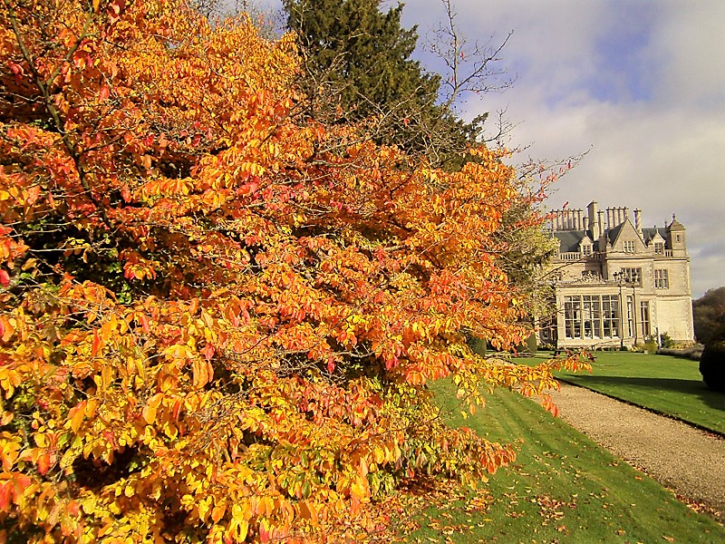 Stoke Rochford Hall in the autumn