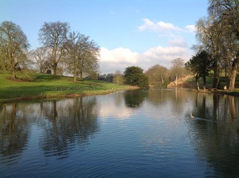 Stoke Rochford parkland