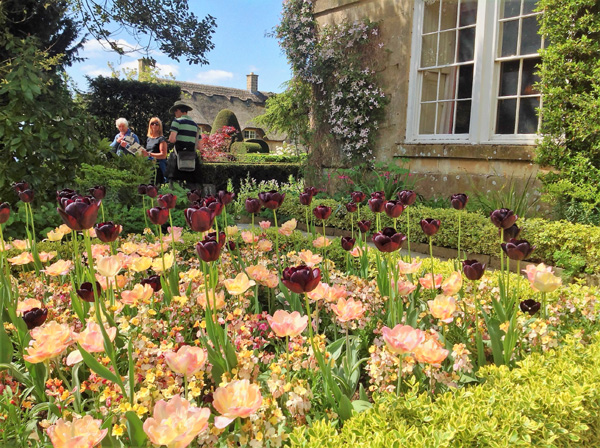 Enjoy the spring flowers at Hidcote Manor
