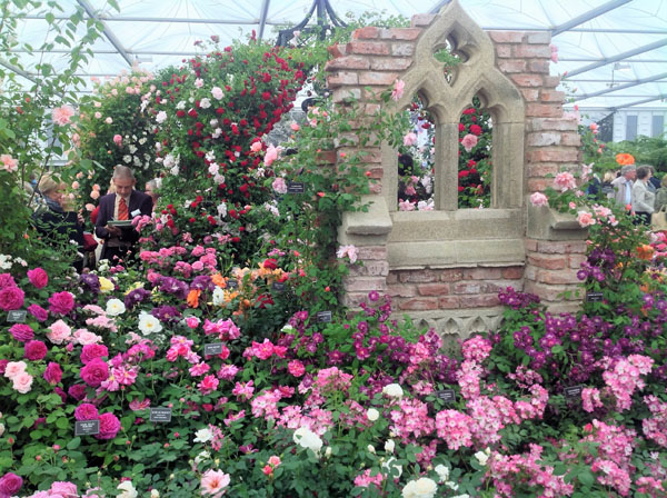 Rose display in the Great Pavilion