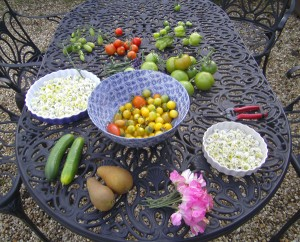 produce-from-the-garden
