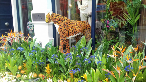 Wildlife shop display in Chelsea in Bloom