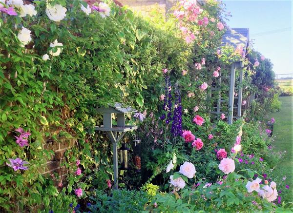 Coles Yard Garden