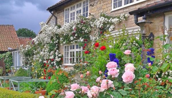 Homestay Kitchen Garden