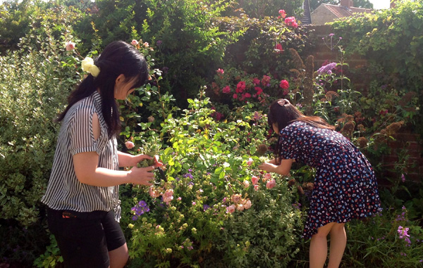 Picking flowers from the garden