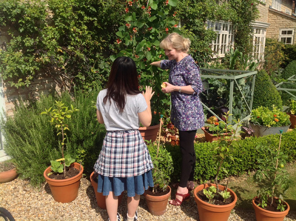 Learning in the kitchen garden