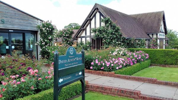 David Austin's Rose Gardens