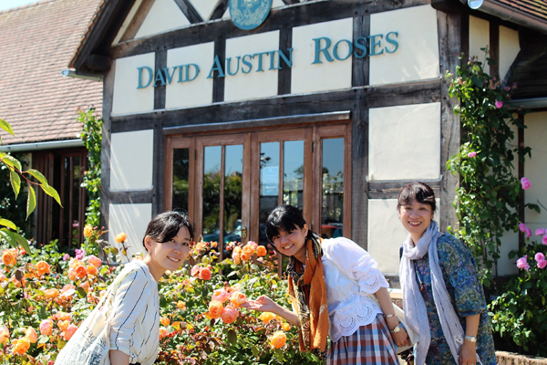 Spend time in the beautiful David Austin Rose Garden